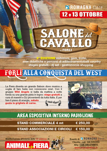 gare_amatoriali_lbertas_country_line_dance_forli_flayer10